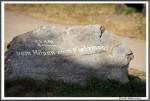 Heidekutschfahrt 280816 Wegweiser IMG 4423