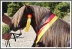Bad Harzburg 090916 El Diabolo Heuer Engel X IMG 6327