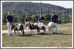 Bad Harzburg 090916 Sieger Familie Hahn 1 Platz IMG 6303
