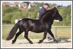 Bad Harzburg 090916 Zeoliet Hashagen IMG 6360