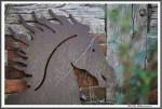 Pfluegen Mit Pferden Bei Peter Hagel  Riepe 290417 IMG 9318