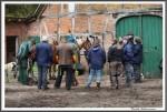 Pfluegen Mit Pferden Bei Peter Hagel  Riepe 290417 IMG 9332
