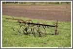 Pfluegen Mit Pferden Bei Peter Hagel  Riepe 290417 IMG 9352