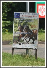 Norddeutsche Stutenschau Bad Segeberg 270816 IMG 3969