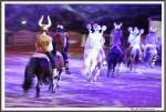 Nordpferd 21.04.17 13 Eiskalte Bedrohung Ipzv Corinna Langner IMG 9787