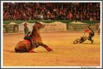 Nordpferd 21.04.17 4 Power Of Riding Die Begegnund Der Kraefte Ina Krueger Oesert IMG 9504