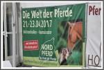 Nordpferd 21.04.17 IMG 9413