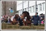 Bremer Galopprennen Mit Shetty 300318 IMG 0461