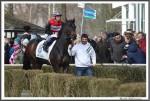 Bremer Galopprennen Mit Shetty 300318 Amazing Sun Mit Jockey Vahdettin Kaplan IMG 0474
