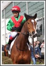 Bremer Galopprennen Mit Shetty 300318 Karibana Mit Jockey Amateurin Lilli Marie Engels IMG 0493