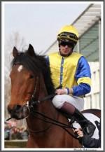 Bremer Galopprennen Mit Shetty 300318 La Provence Mit Jockey Jaromir Safar IMG 0496