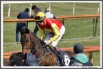 Bremer Galopprennen Mit Shetty 300318 Serienlohn Mit Jockey Jaromir Safar IMG 0772