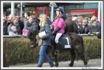 Bremer Galopprennen Mit Shetty 300318 Shetty Genco IMG 0740