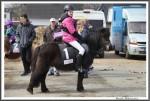 Bremer Galopprennen Mit Shetty 300318 Shetty Genco Mit Charlene Beckmann  IMG 0578