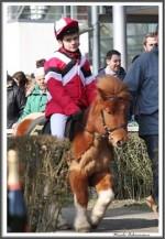 Bremer Galopprennen Mit Shetty 300318 Shetty Hidalgo Mit Florian Koester IMG 0633