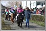 Bremer Galopprennen Mit Shetty 300318 Shetty Im Vorfuehrring IMG 0660