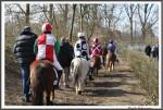 Bremer Galopprennen Mit Shetty 300318 Shetty Rueckweg Zum Stall MG 0758