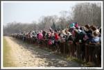 Bremer Galopprennen Mit Shetty 300318 Shetty Viele Zuschauer Entlang Der Bahn IMG 0663