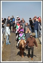 Bremer Galopprennen Mit Shetty 300318 Shetty Zack Vorbei Das Rennen IMG 0697