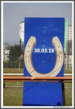 Bremer Galopprennen Mit Shetty 300318 Shetty Ziel Nach 300 Metern IMG 0661