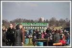 Bremer Galopprennen Mit Shetty 300318 Startmaschine IMG 0776