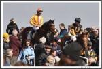 Bremer Galopprennen Mit Shetty 300318 Vom Rennen Zurueck Zum Wiegen IMG 0618
