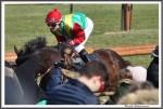 Bremer Galopprennen Mit Shetty 300318 Wutzelmann Mit Jockey Miguel Lopez IMG 0769