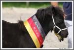 Igs Bad Harzburg 082017 Kipp Rhena IMG 9809