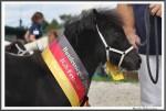 Igs Bad Harzburg 082017 Kipp Rhena   X IMG 9807