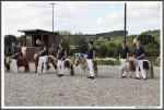 Igs Bad Harzburg 082017 Mini Stuten Endring IMG 0136